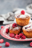 Homemade delicious raspberry muffins. Fresh homemade delicious raspberry muffins Stock Photos