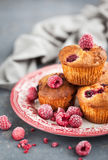 Homemade delicious raspberry muffins. Fresh homemade delicious raspberry muffins Stock Photography