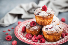Homemade delicious raspberry muffins. Fresh homemade delicious raspberry muffins Royalty Free Stock Image