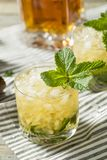 Homemade Derby Mint Julep. With Kentucky Bourbon royalty free stock photo