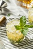 Homemade Derby Mint Julep. With Kentucky Bourbon royalty free stock photography