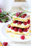 Homemade dessert with fresh raspberries. Food close up Stock Image