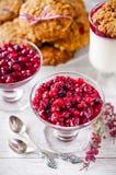 Homemade dessert panna cotta with cranberry sauce Stock Images