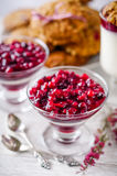Homemade dessert panna cotta with cranberry sauce Royalty Free Stock Images