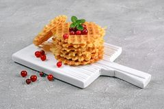 Homemade dessert. Sweet waffles with cranberry and mint on white wooden cutting board. On gray concrete background Stock Photos
