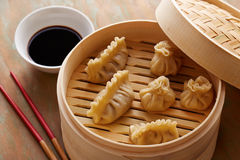 Homemade dim-sum asian dumplings Stock Photos