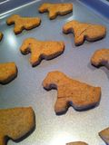Homemade doggy treats Royalty Free Stock Images