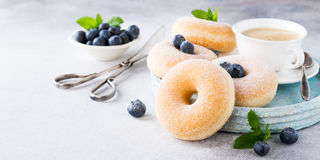 Homemade donuts with sugar Royalty Free Stock Image