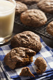 Homemade Double Chocolate Chip Cookies Stock Images