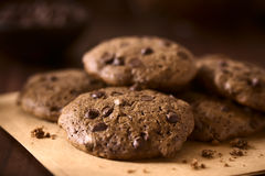 Homemade Double Chocolate Chip Cookies Royalty Free Stock Images