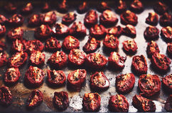 Homemade dried tomatoes with thyme and rosemary Royalty Free Stock Image