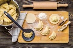 Homemade dumplings Stock Photography