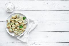 Homemade Dumplings. Homemade Meat Dumplings with sour cream on white wooden table, top view, copy space. Fresh Dumplings or Postickers on plate stock images