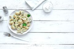 Homemade Dumplings. Homemade Meat Dumplings with sour cream on white wooden table, top view, copy space. Fresh Dumplings or Postickers on plate royalty free stock photography