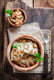 Homemade dumplings with wild mushrroms and onion Stock Images
