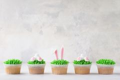 Easter cupcakes in a row. Decorated as bunny and ears. Homemade Easter cupcakes in a row. Decorated as grass, bunny and bunny ears stock images