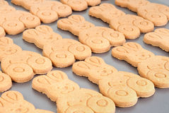 Homemade Easter gingerbread. Easter gingerbread cookies on a baking tray Stock Image