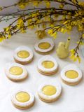 Homemade Easter lemon cookies and forsythia blooming twigs on a light background stock images