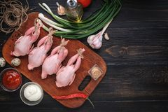 Homemade eco-friendly raw quails ready for cooking. Royalty Free Stock Photography