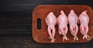 Homemade eco-friendly raw quails ready for cooking.  Royalty Free Stock Photo