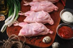Homemade eco-friendly raw quails ready for cooking. Stock Photography