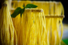 Homemade egg noodles Royalty Free Stock Image