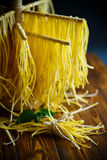 Homemade egg noodles Stock Images