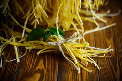 Homemade egg noodles Royalty Free Stock Photo