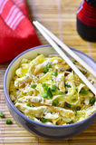 Homemade egg noodles with omelet and green onion. Royalty Free Stock Image