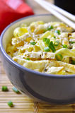 Homemade egg noodles with omelet and green onion. Royalty Free Stock Photo
