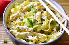 Homemade egg noodles with omelet and green onion. Stock Photo