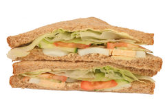 Homemade egg salad sandwiches. Two homemade egg salad sandwiches Stock Photos