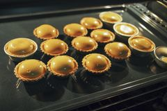 Homemade egg tart baking in the oven. Close up view of homemade egg tart baking in the oven Royalty Free Stock Image