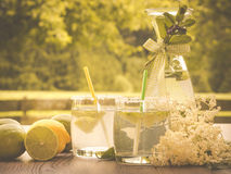 Homemade elderflower sirup. Photo shows a garden situation; table is decorated with lemons, elder blossom, two glasses filled with homemade elderflower sirup Royalty Free Stock Photo