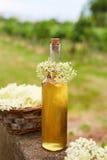 Homemade elderflower syrup Stock Photos