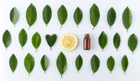 Homemade essential oil concept. bottle essential oil with slice stock photo