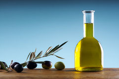 Homemade extravirgin olive oil Stock Photos