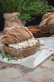 Homemade farm bread with cottage cheese curd and thyme herb, malt flour and curd cream in bowl on wooden table.  stock photos