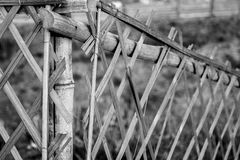 Homemade Fence Made of Bamboo. Indian Homemade Fence of Bamboo, Black and white royalty free stock photo