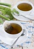 Homemade Fennel Tea Stock Photography