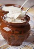 Homemade fermented milk Stock Image