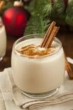 Homemade Festive Cinnamon Eggnog Royalty Free Stock Photos