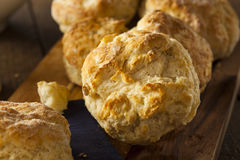 Homemade Flakey Buttermilk Biscuits. Ready to Eat Royalty Free Stock Photos