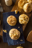 Homemade Flakey Buttermilk Biscuits. Ready to Eat Royalty Free Stock Photo