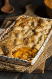 Homemade Flakey Peach Cobbler Stock Image