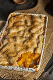 Homemade Flakey Peach Cobbler. In a Dish royalty free stock images