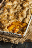 Homemade Flakey Peach Cobbler. In a Dish stock photo
