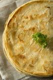 Homemade Flour Indian Paratha Bread Royalty Free Stock Photos