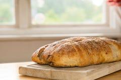 Homemade fresh baked bread Royalty Free Stock Photos
