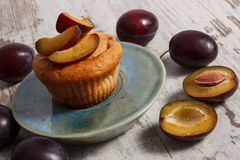 Fresh baked muffins with plums, concept of delicious dessert Stock Photos